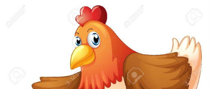 A galinha comprometida